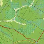 Topo Pro grafika - Lesy a kosodřeviny